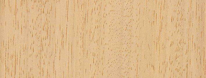 Abachi massivträ - Kärnsund Wood Link
