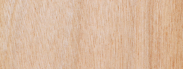 Gaboon massivträ - Kärnsund Wood Link