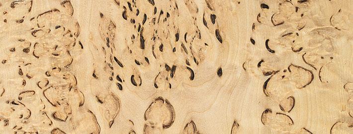 Masurbjörk massivträ - Kärnsund Wood Link